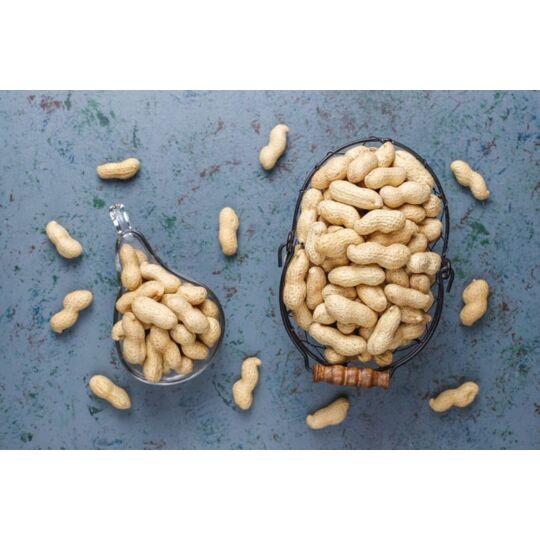 Cacahuètes Ou Arachides En Coque Bio & Équitables D'ouzbékistan - 500g - Hecosfair HECOSFAIR