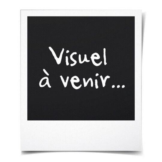 Domaine La Gemiere 2018 Sancerre - Vin Blanc De La Vallee De La Loire MARQUE INCONNUE