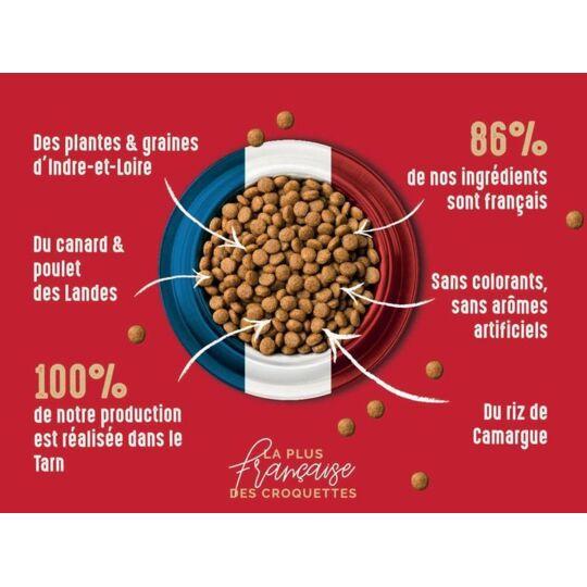 Bab'in 2kg Croquette Pour Chaton Riche En Poulet Aliment Hautement Digestible. BAB'IN