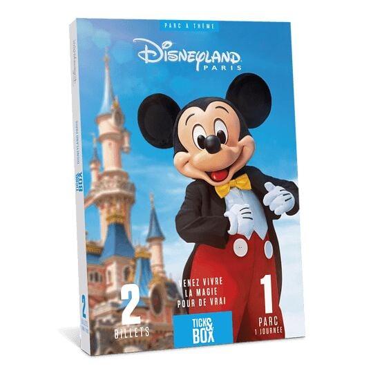 Disneyland Paris 1 Jour / 1 Parc WONDERBOX