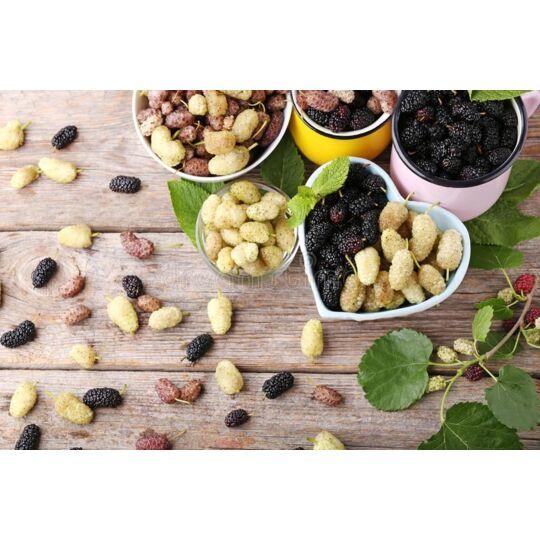 Mulberries Noires & Blanches Séchées Bio & Équitables D'ouzbékistan -500g - Hecosfair HECOSFAIR