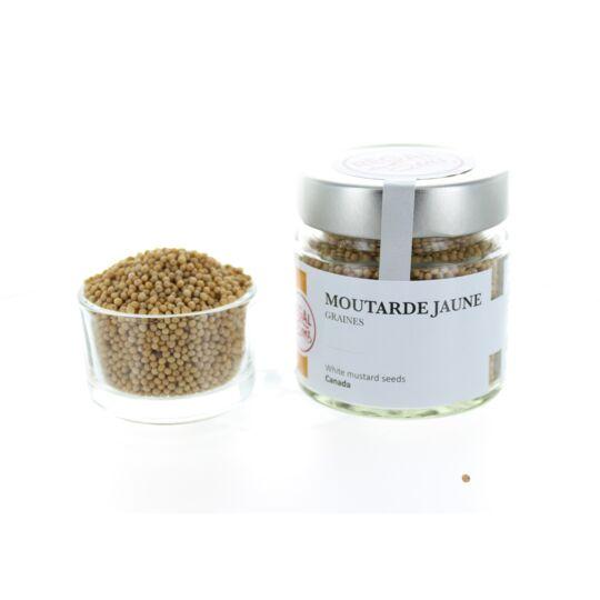 Moutarde Jaune - Graines