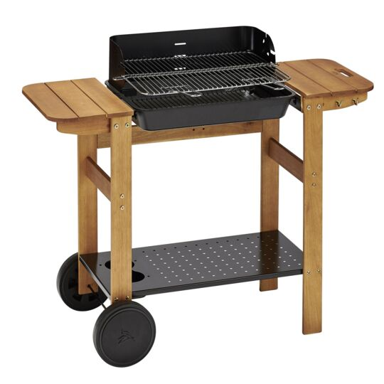 Barbecue fonte C50