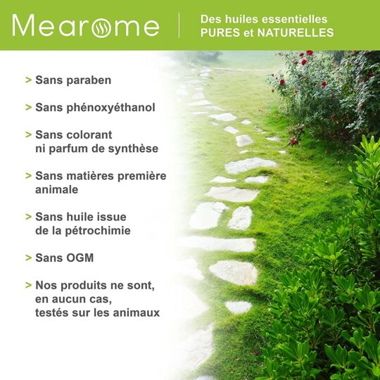 Huile Essentielle Bio Arbre à Thé - Tea Tree - 30ml MEAROME